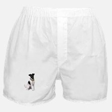 Smooth Fox T - (bw) Boxer Shorts