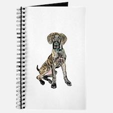 Brindle Great Dane Pup Journal