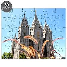 Mormon Salt Lake Temple Puzzle