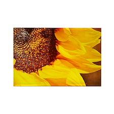 Sunflower Rectangle Magnet Magnets