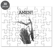A Praying Mantis Praying Puzzle