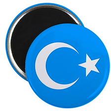 """2.25"""" Uyghur Flag Magnet (100 pack)"""