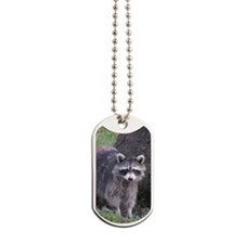 Raccoon Dog Tags