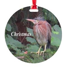Green Heron Ornament