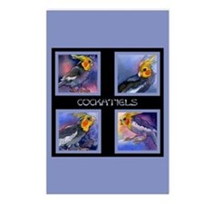 Cockatiel Parrots Postcards (Package of 8)