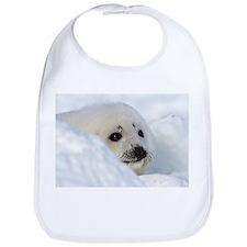 fur seal Bib