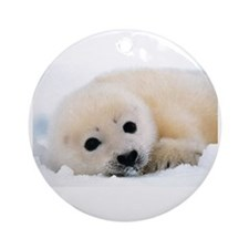 fur seal Ornament (Round)