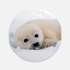 fur seal Ornament (Round)