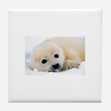 fur seal Tile Coaster