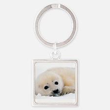 fur seal Keychains