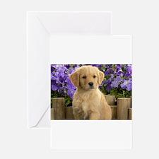 labrador puppy Greeting Cards