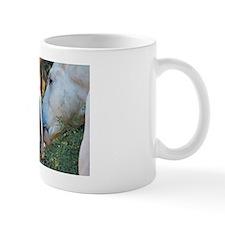 Horse Snuggles Mug