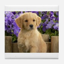 labrador puppy Tile Coaster