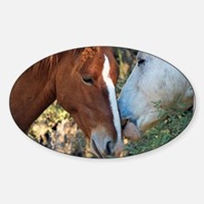 Horse Snuggles Decal