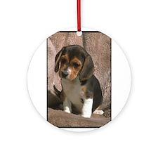 Beagle Puppy Dog Ornament (Round)