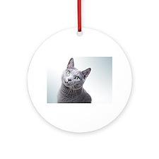 russian blue cat Ornament (Round)