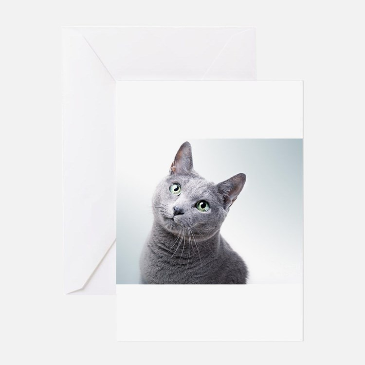 russian blue cat Greeting Cards