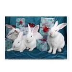Holiday Gift Bunnies, Dexter, Kirby, Shasta, Sierr