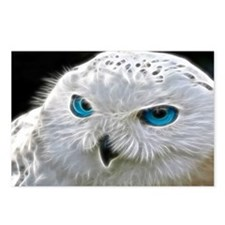 White Owl Postcards (Package of 8)