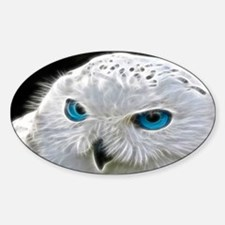 White Owl Decal