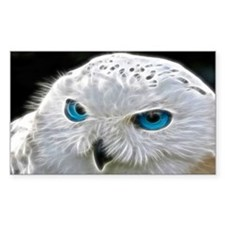 White Owl Decal