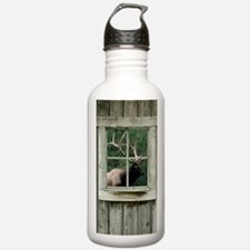 Old wood cabin window Water Bottle