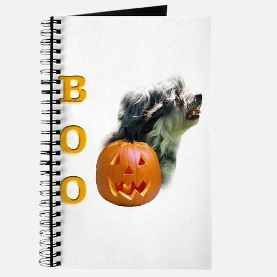 Lowchen Boo Journal