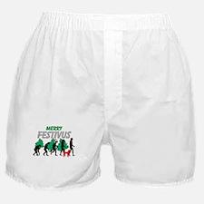 Merry Festivus Boxer Shorts