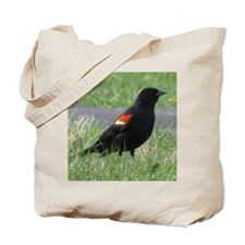 red-Winged Blackbird Lover Tote Bag