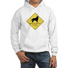 Bernese Mountain Dog crossing Hoodie
