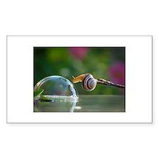 snail on a limb Decal