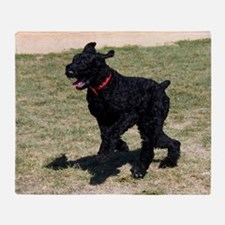 Giant Schnauzer Throw Blanket