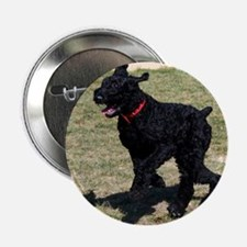 "Giant Schnauzer 2.25"" Button"