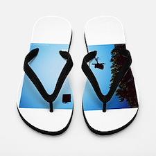 Take Flight! Flip Flops