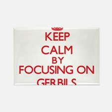 Keep Calm by focusing on Gerbils Magnets