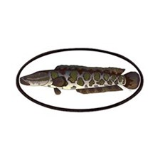 Northern Snakehead fish Patches