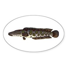 Northern Snakehead fish Decal