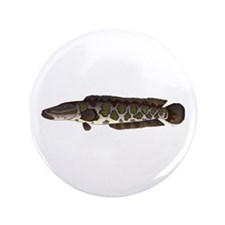 "Northern Snakehead fish 3.5"" Button"