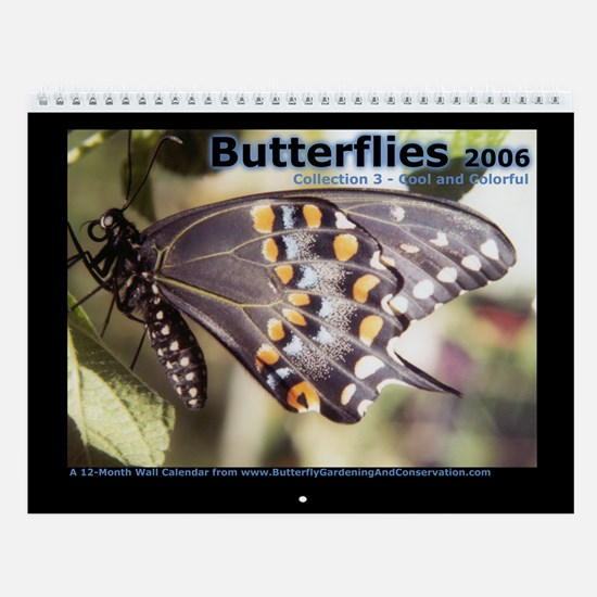 Butterflies: Collection 3 - Cool and Colorful
