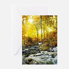 Autumn Creek Greeting Cards