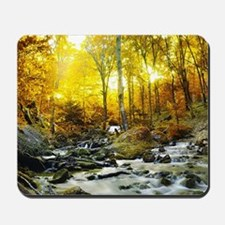 Autumn Creek Mousepad