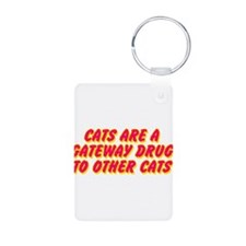 Cats Are A Gateway Drug To Other Cats Keychains