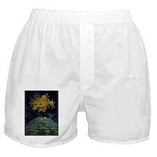 Yog Sothoth Boxer Shorts