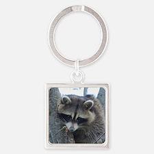 Raccoon Keychains