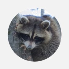 Raccoon Ornament (Round)