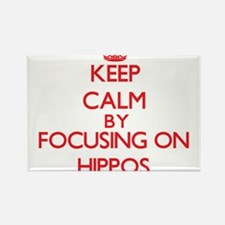 Keep Calm by focusing on Hippos Magnets