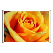 Flame Colored Rose Banner