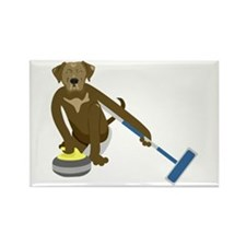 Chocolate Lab Curling Rectangle Magnet