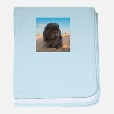 Lop Eared Beach Day baby blanket