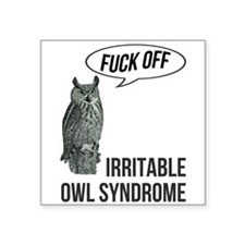 "Irritable Owl Syndrome Square Sticker 3"" x 3"""